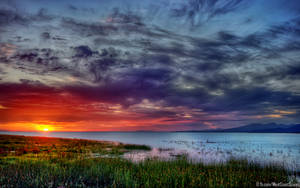 Fireline by IvanAndreevich