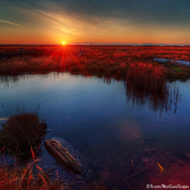 Stillness by IvanAndreevich
