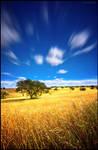Endless Plains...