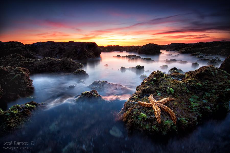 Fallen Star II by Inebriantia