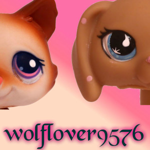 wolflover9576's Profile Picture