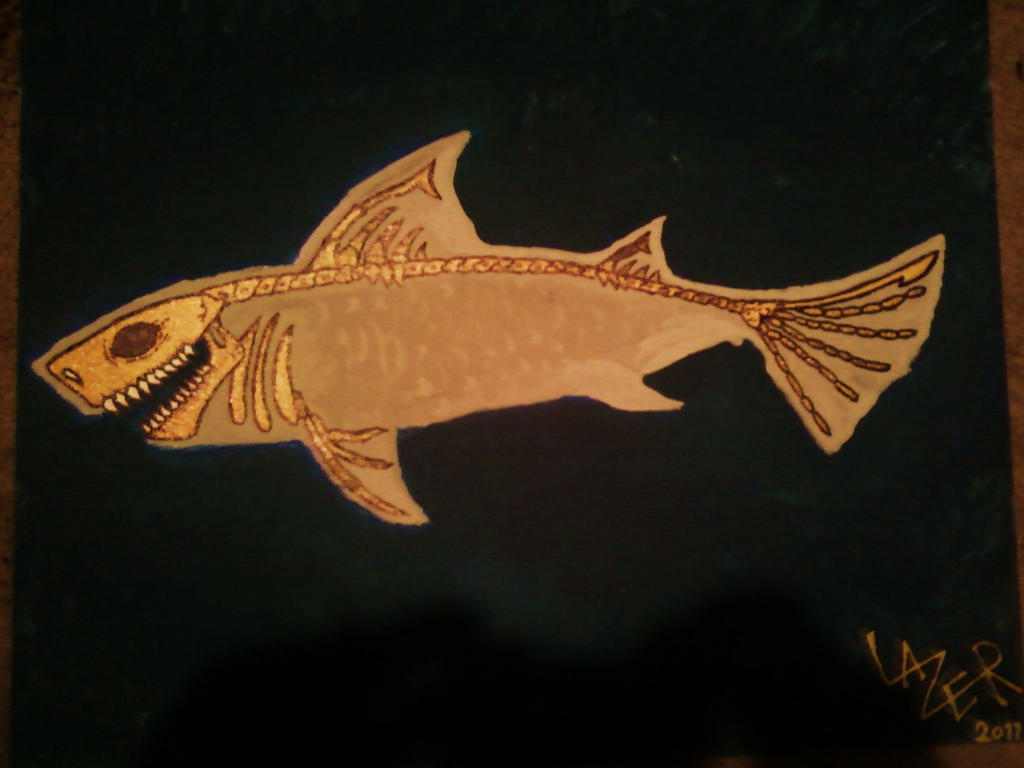 Shark  Wikipedia