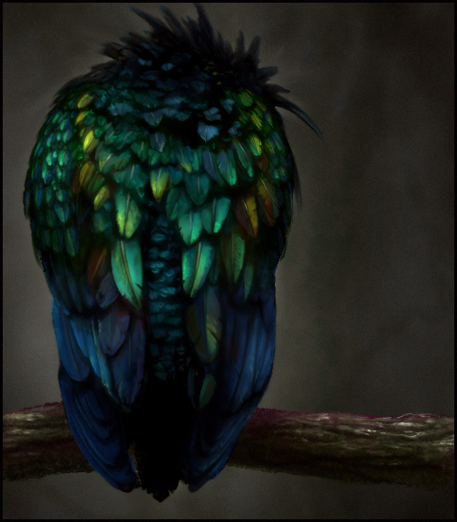Sketchpaint Bird by jezebel