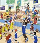 Volleyball BD et Paillettes
