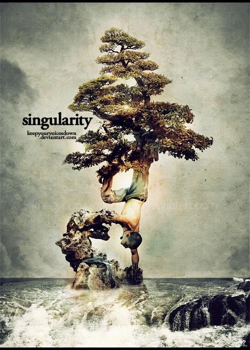 Singularity by keepyourvoicesdown