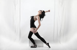 swan-2 by xstockx