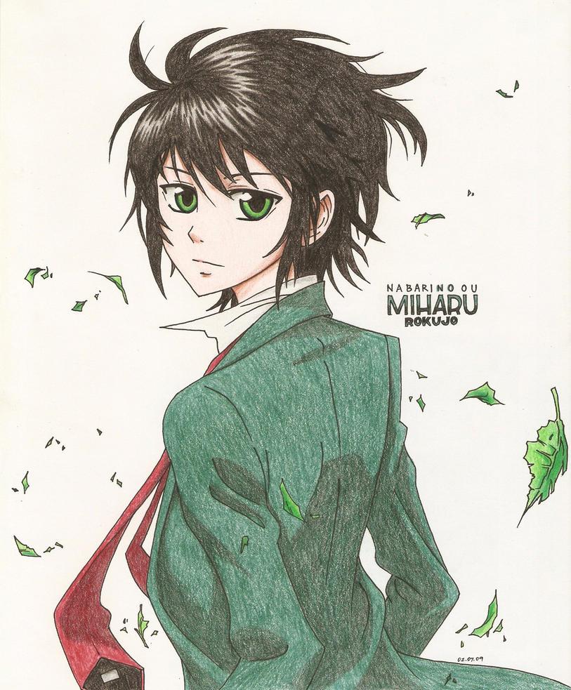 Miharu Rokujo By Mikarichan On DeviantART