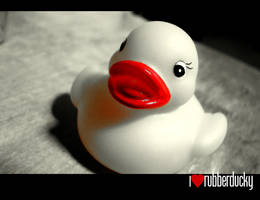 i.luv.rubberducky - 9