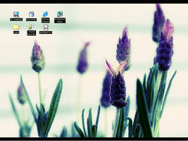 My Desktop Oct 2007