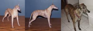 Greyhound Assembled