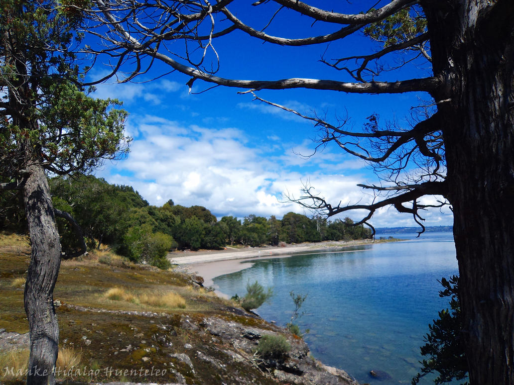 lago sur de chile:
