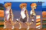 Cheetah adopt