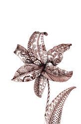 Henna Lily by Camera02