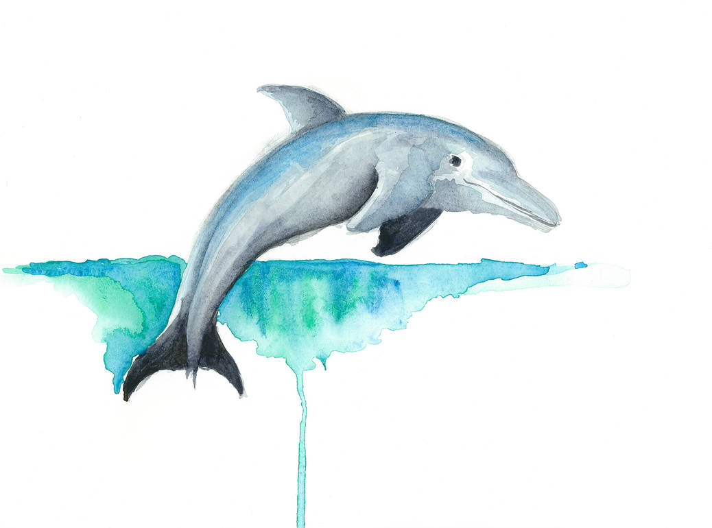 f40fa20a1db Dolphin Watercolor Painting by EnviousV on DeviantArt
