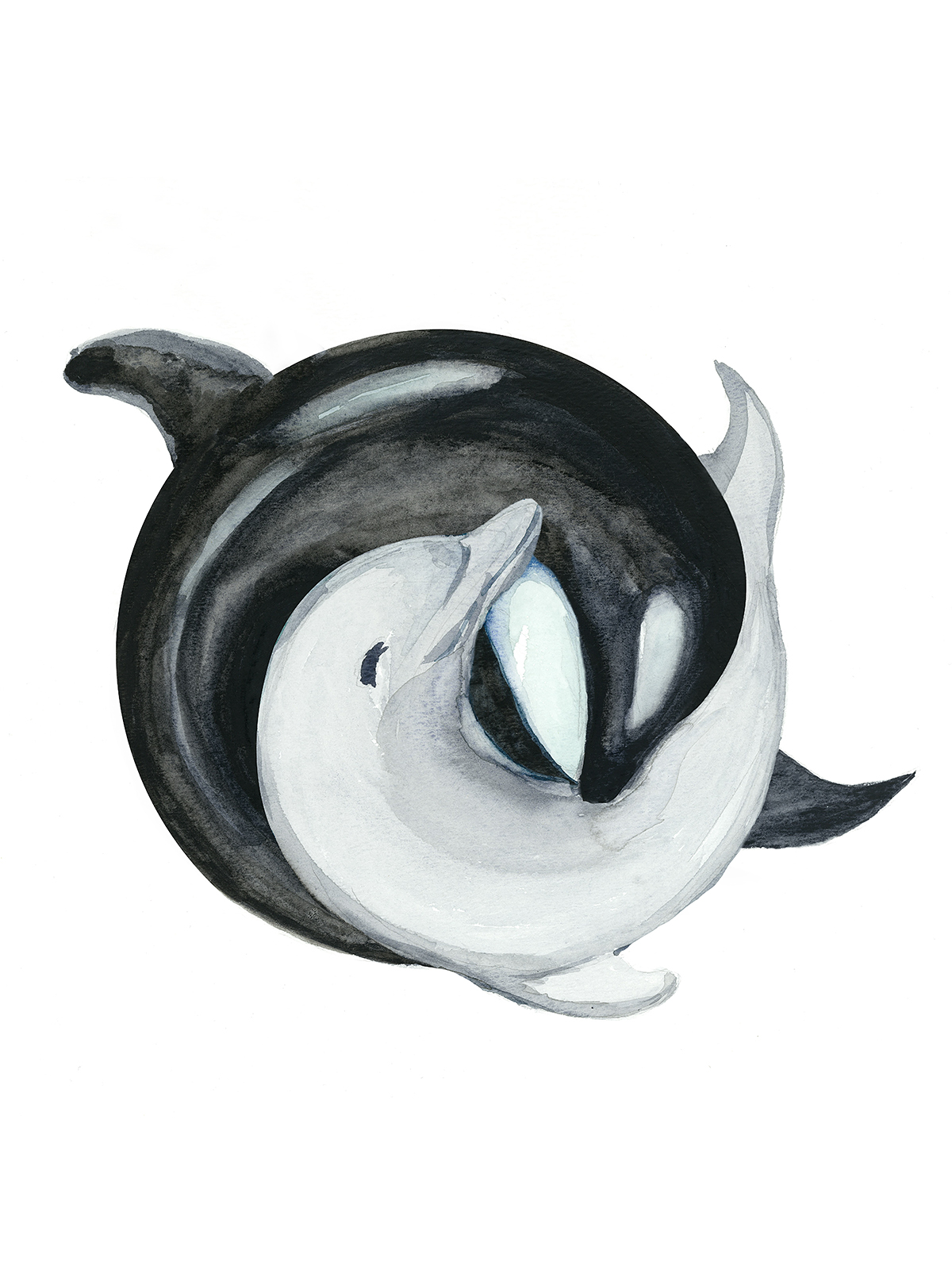 orca and a dolphin in yinyang watercolor painting by enviousv on