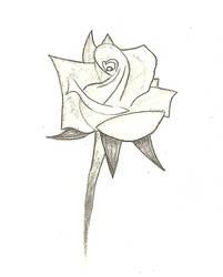 Just One Rose by PotatoPrint007