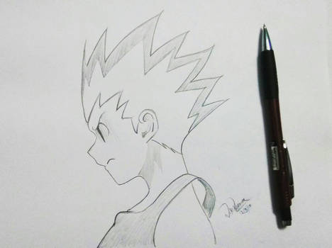 Frustrated Gon