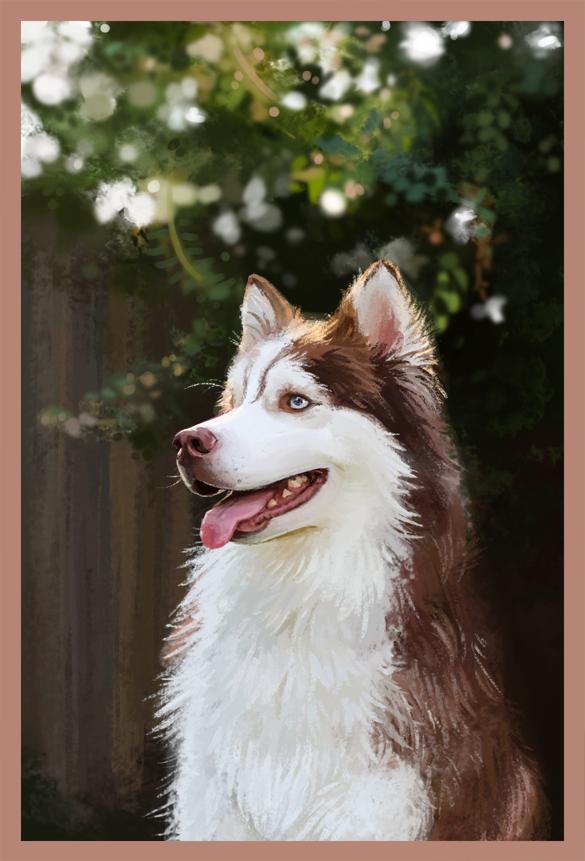 Sketch Daily - Huskies by katiepox