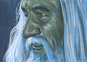 LotR PSC - Gandalf the White 2 by AshleighPopplewell