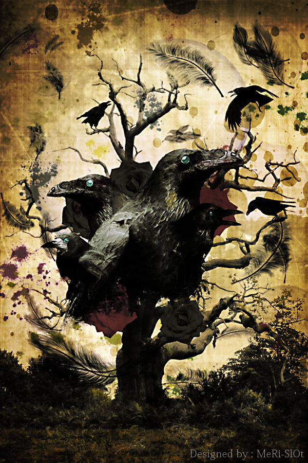 The Dark Ravens by MeRi-SlOt