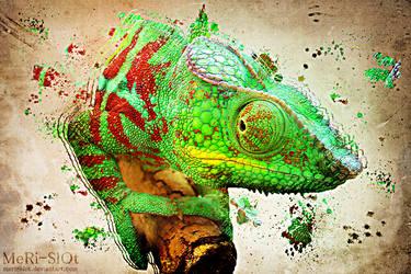 Artistic Chameleon by MeRi-SlOt