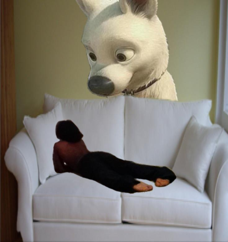 Bolt The Dog Full Movie