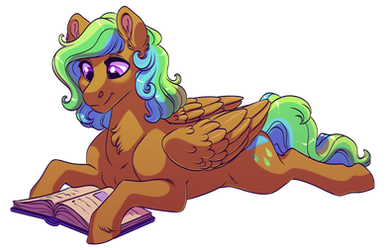Comm: Reading Time