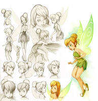 Tinker Bell Study