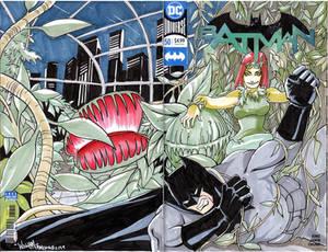 Bats vs. Ivy