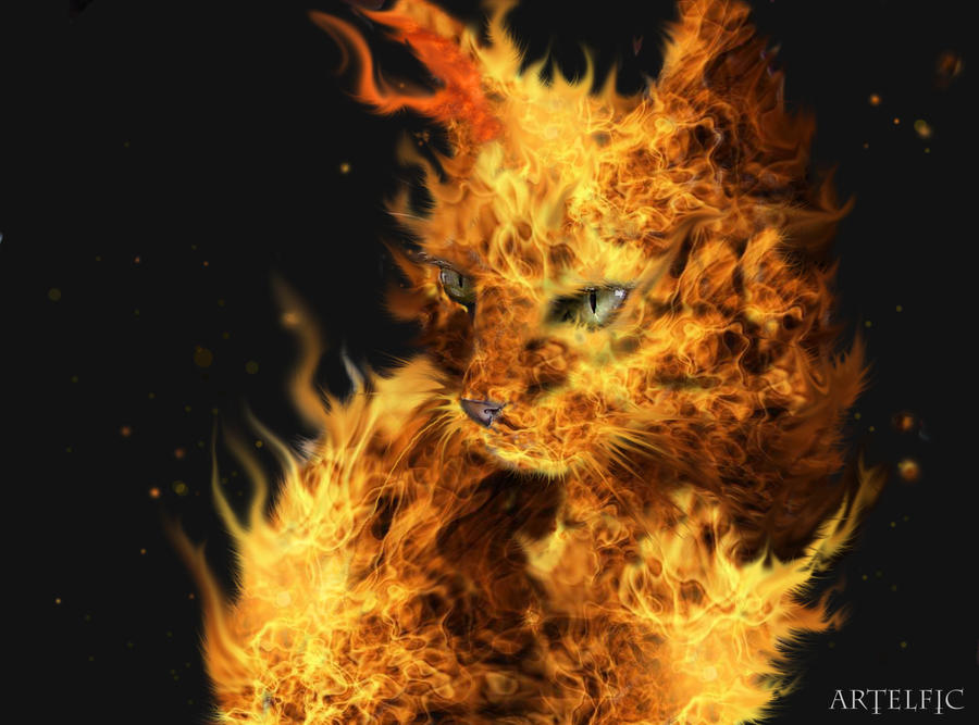 Fire cat by Artelfic