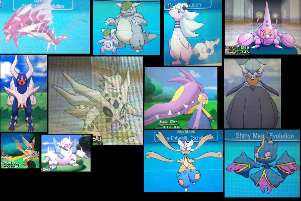 Shiny Kalos Pokemon Images | Pokemon Images