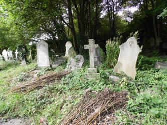Arnos Vale Cemetery Aug 2014 by MedusaTombStone
