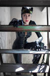 Catwoman - Crawling up