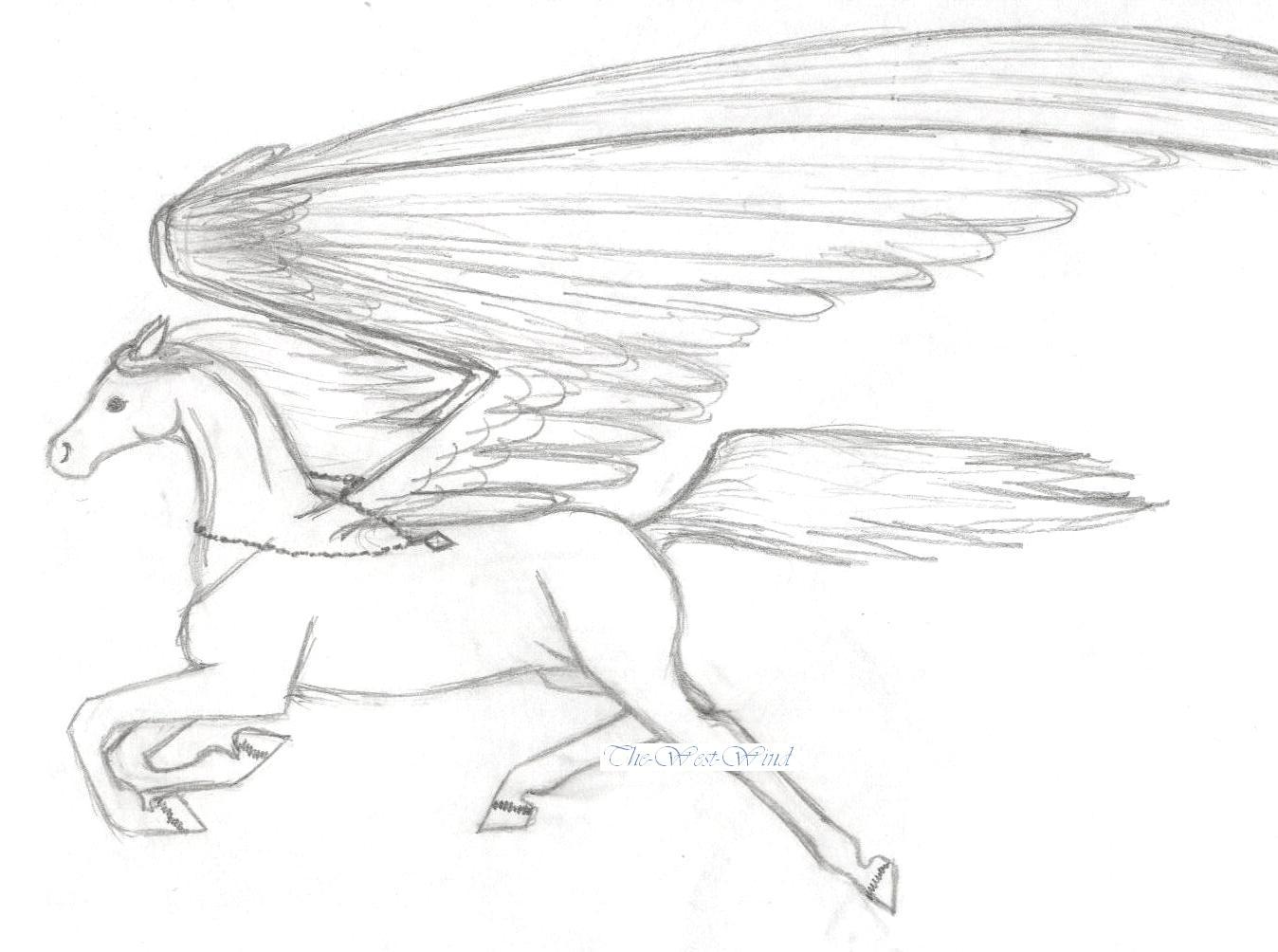 Uncategorized Drawings Of Pegasus pegasus 1 mid flight by the west wind on deviantart wind