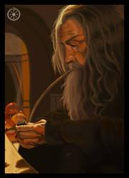 Gandalf the Grey by DameOdessa