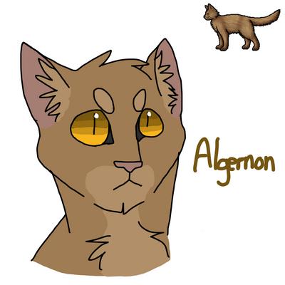 #8 - Algernon by SpeckledCactus