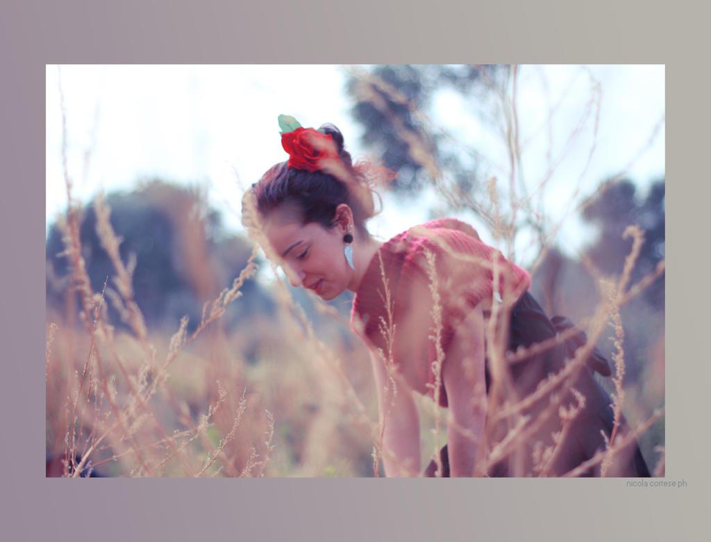 winter blossoms IV by HunterOfSolitude