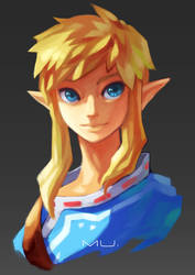 Link? by CatLowTheMU