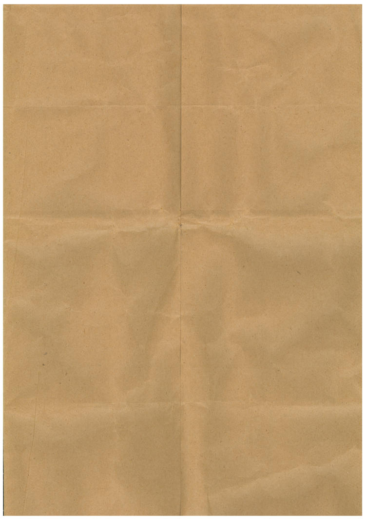 Paper Bag Texture By Drive24seven