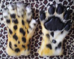 Amur leopard handpaws 2