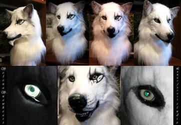 White wolf  head