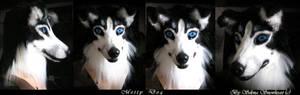 Metty dog mask
