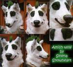 Amish wolf comission