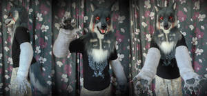 Di wolf partial