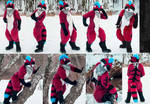 Eric raccoon fullsuit by SnowVolkolak
