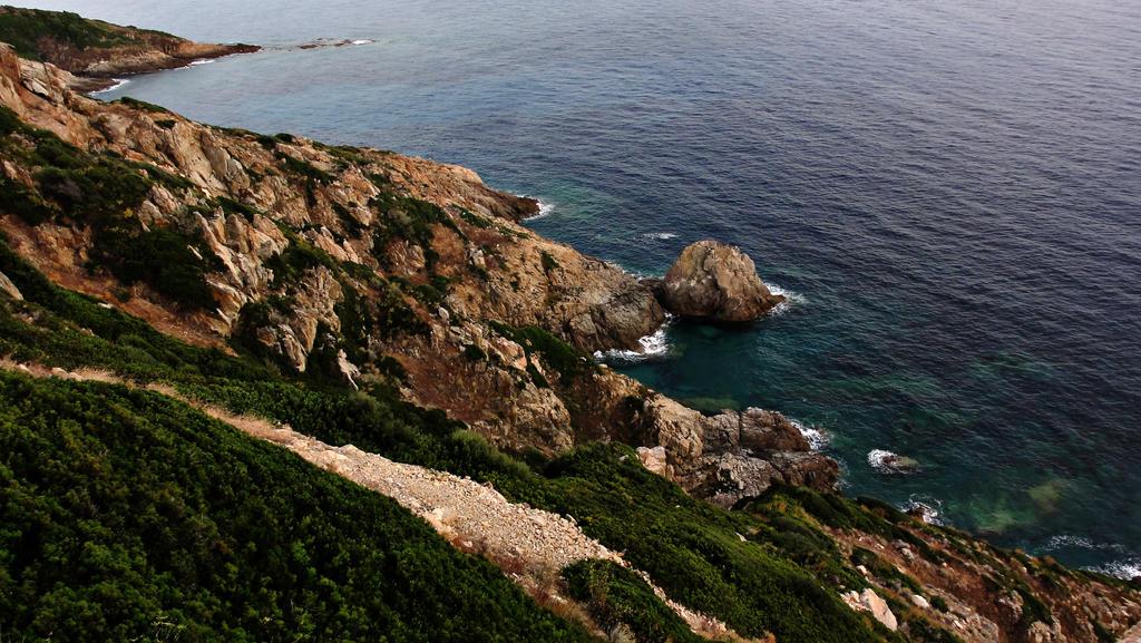 cliff__corisca_by_lennartvdk-d4gky7n.jpg