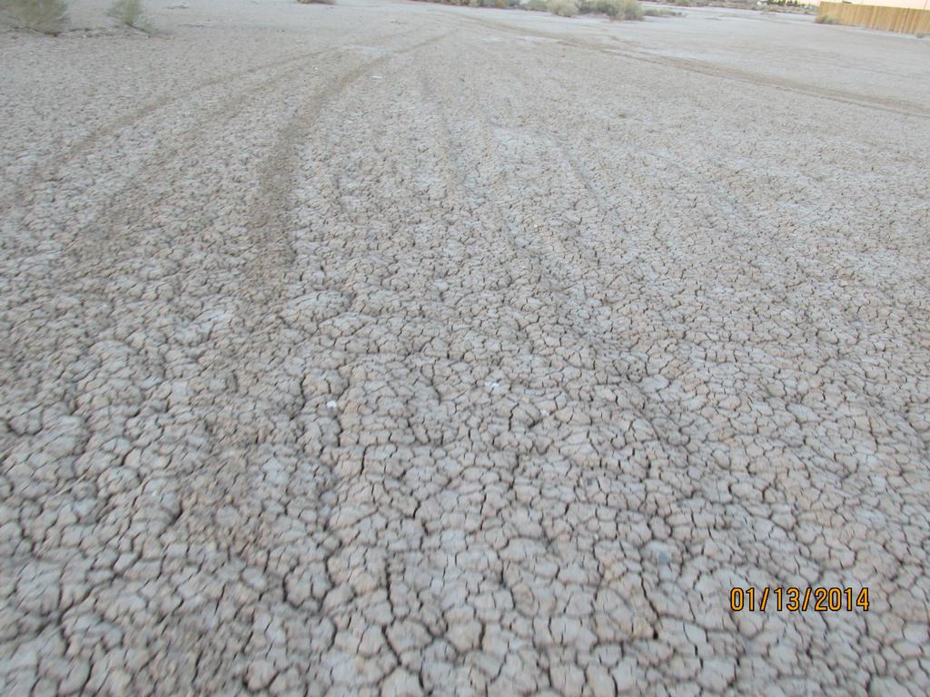 Desert Walk by PunkyDoodle96