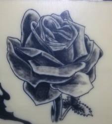 Rose : 07