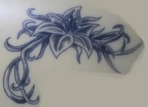 Lotus : 09