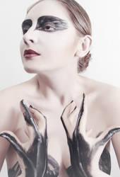 Swan by Lleye